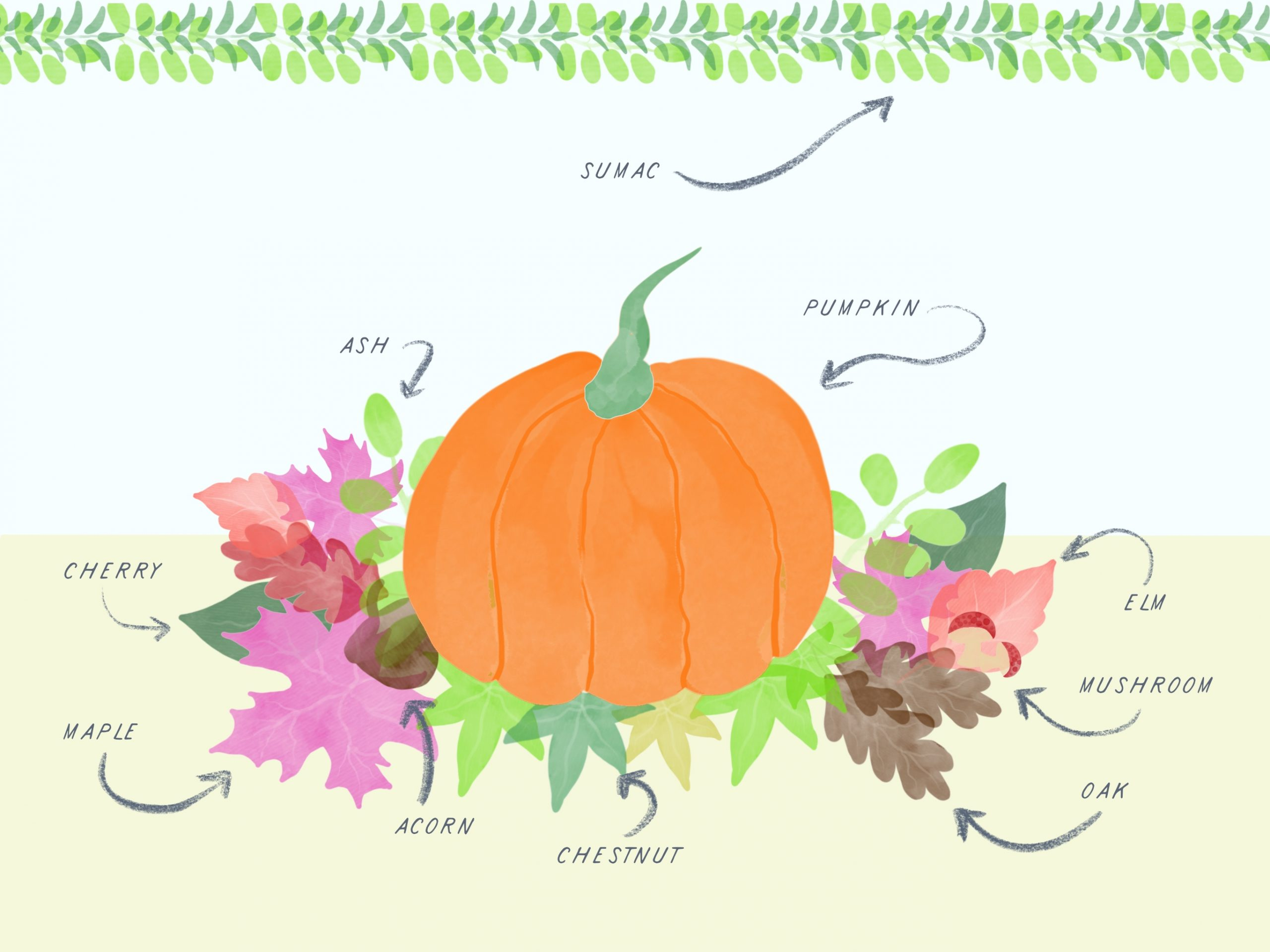Fall Notions Stamp Set